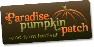 Paradise Pumpkin Patch header image